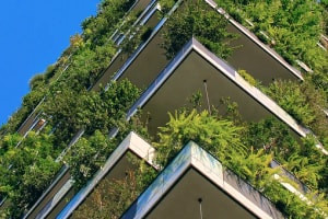 Sustainable Architecture: Climatic Considerations and Green Buildings