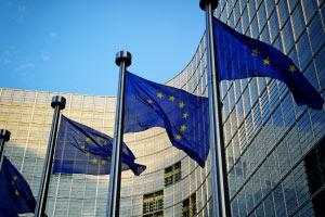 Diploma in EU Public Procurement