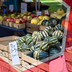 Cooperatives and Farmers' Organizations (MNRE015)